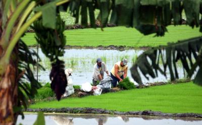 Desde la ciudadanía se preparan propuestas para mejorar condiciones en el agro.